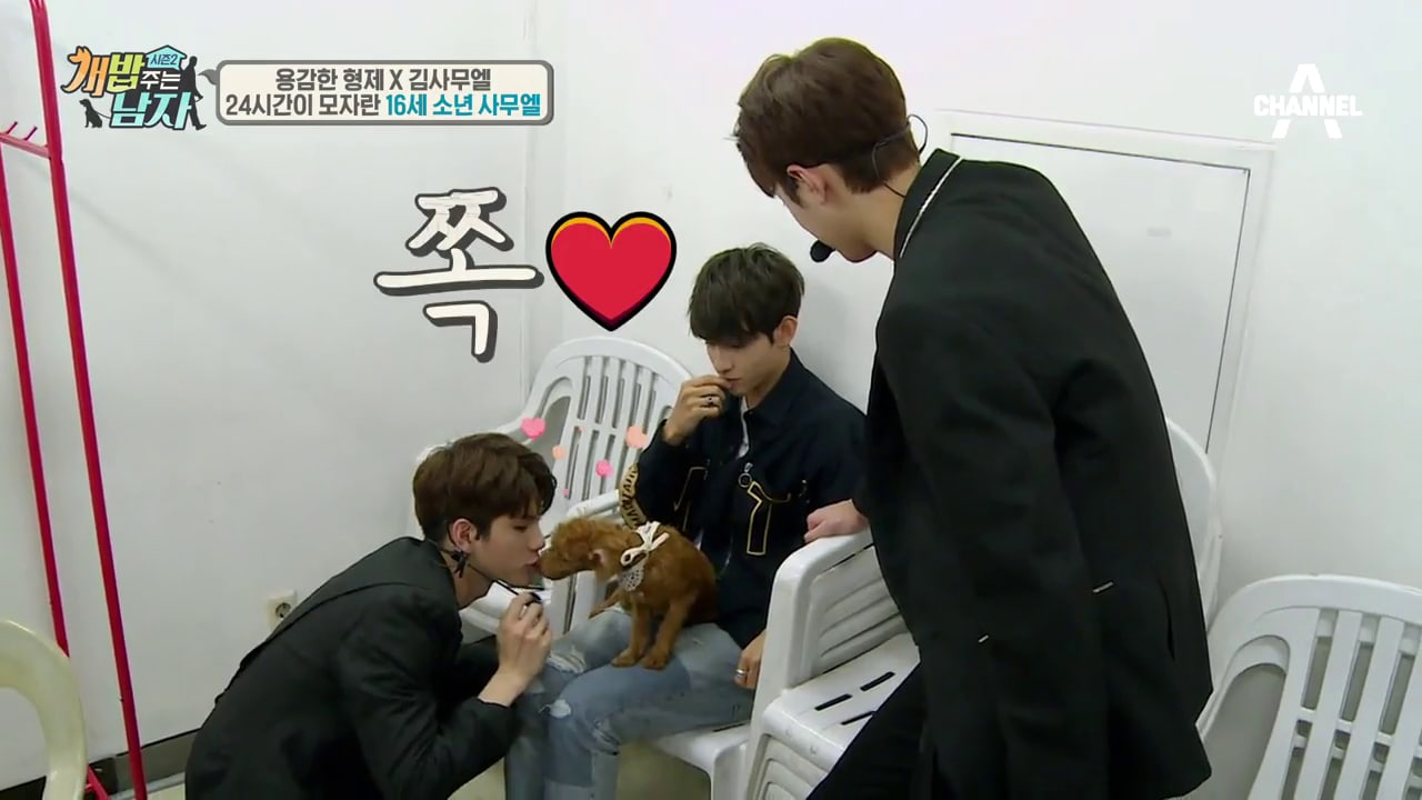 Watch: Wanna One Members Help Samuel Dog-Sit