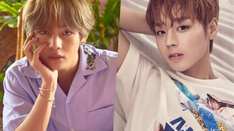 BTS's V Comments On Wanna One's Park Ji Hoon Choosing Him As Role Model