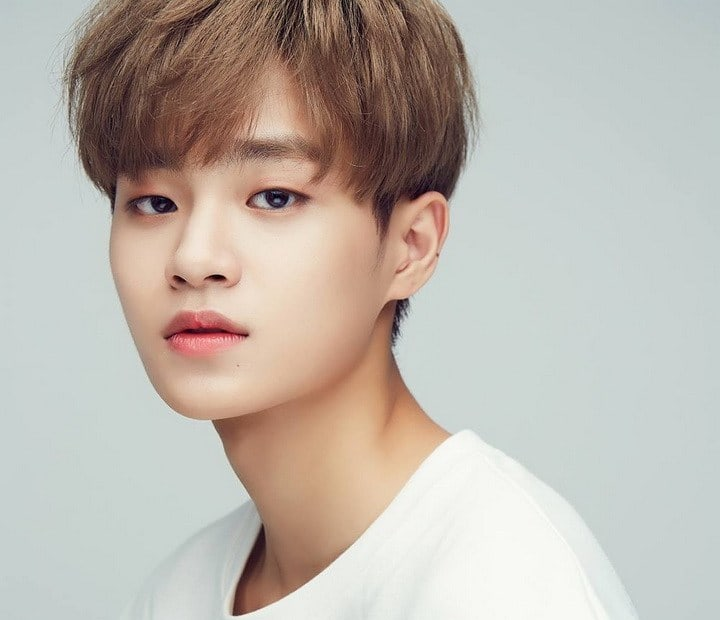 Wanna One's Agency Addresses Lee Dae Hwi's Ear Injury