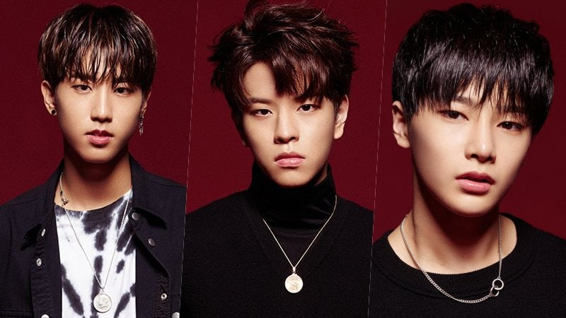 "Update: JYP Survival Program ""Stray Kids"" Unveils Next Three Trainees"