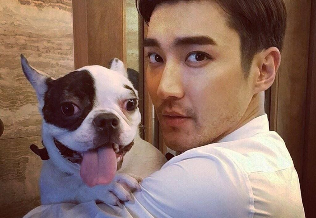 Family Of Deceased CEO Forgives Choi Siwon And Decides Not To Take Legal Action