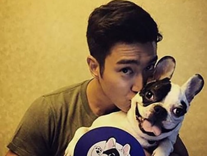 Choi Siwon's Family Gets Fined For Dog Biting Incident