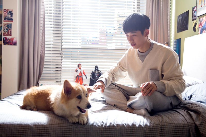 """Jung Hae In Is An Even Bigger Heartthrob Behind The Scenes Of """"While You Were Sleeping"""""""