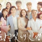 """My Golden Life"" Achieves Highest Ratings Yet With Over 40 Percent"