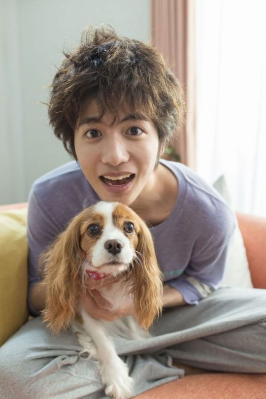 3 reasons why you should watch the jdrama �you�re my pet
