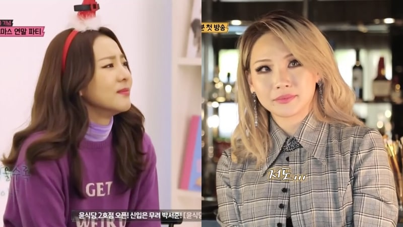 Sandara Park Says She Cried Watching CL Face Difficulties In The U.S. On TV Show