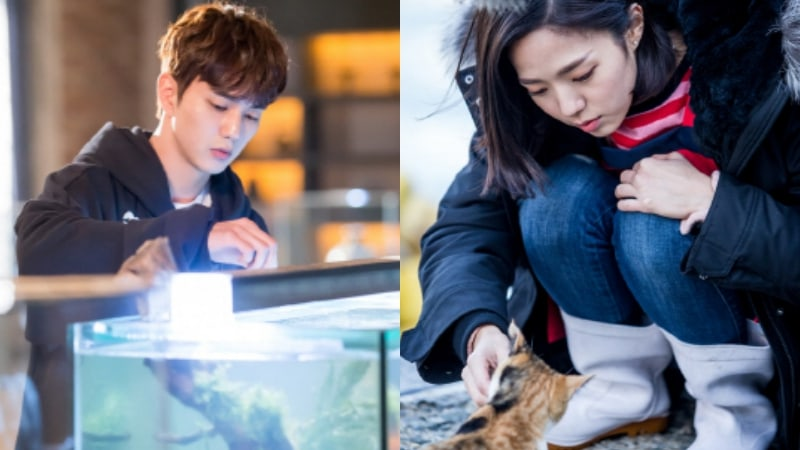 "Yoo Seung Ho And Chae Soo Bin Show Their Caring Nature On Set Of ""I Am Not A Robot"""