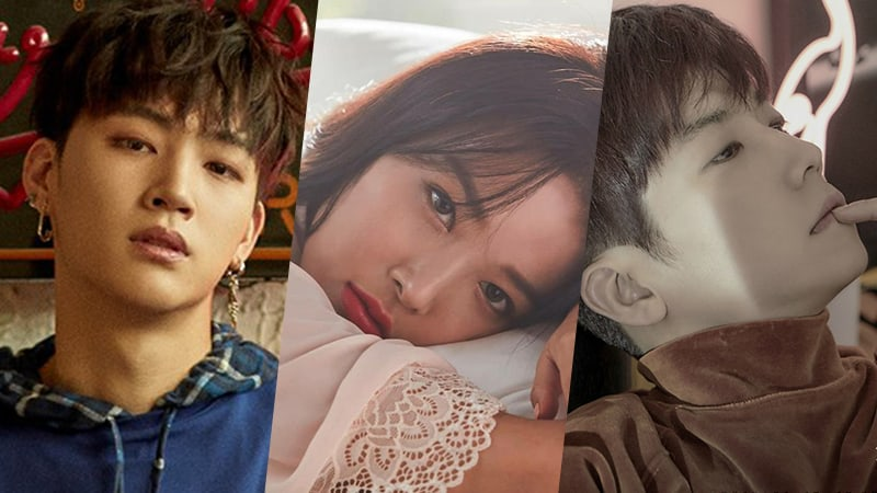 "GOT7's JB, Yubin, 2PM's Wooyoung, And More Confirmed For JYP Special Of ""I Can See Your Voice"""
