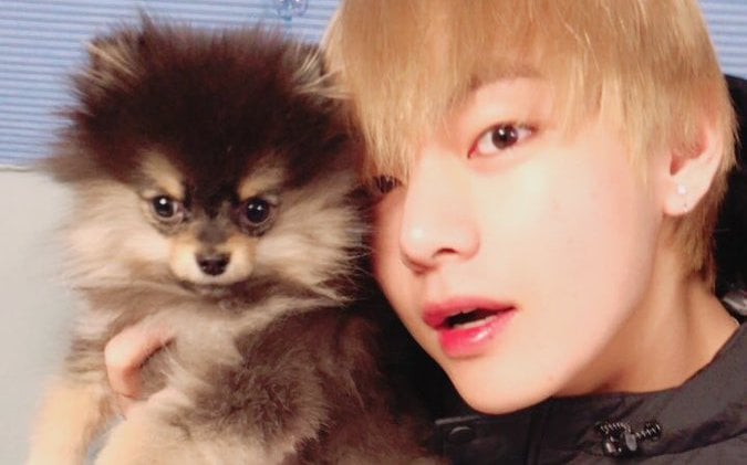 BTS's V Receives Praise From Trainer For His Attitude When Adopting A Dog