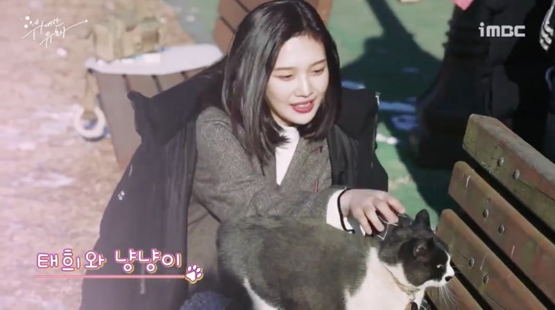 """Watch: Red Velvet's Joy Gets Playful With A Cat On The Set Of """"Tempted"""""""