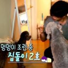 """Watch: """"It's Dangerous Beyond The Blankets"""" Gives A Glimpse Of Four Housemates In New Teaser"""