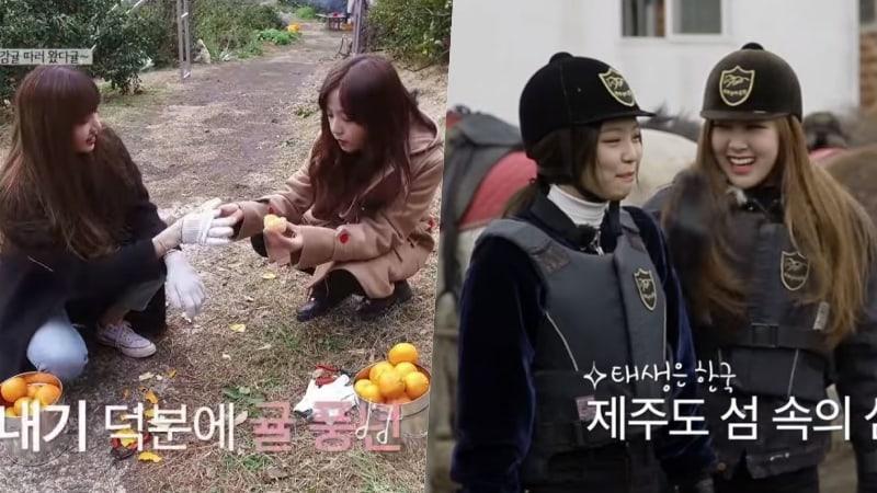 "Watch: BLACKPINK Enjoys Fan-Suggested Activities On Jeju Island In ""BLACKPINK House"""