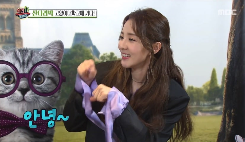Sandara Park Introduces Her Cats And Reveals Plans For This Year