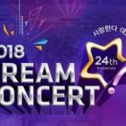 Watch Live: 2018 Dream Concert With SEVENTEEN, SHINee's Taemin, Red Velvet, NCT, And More