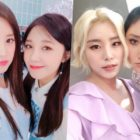 """Members Of Apink And MAMAMOO To Guest On """"Life Bar"""" Together"""