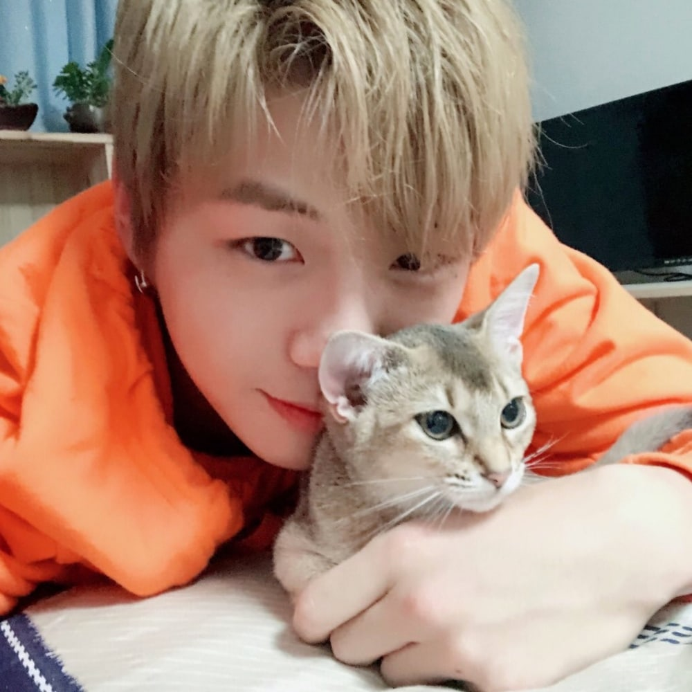 K-Pop Idol Pets Who Are Almost As Famous As Their Owners