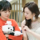 "Cast Of ""The Beauty Inside"" Shows Cute Chemistry With Dog Co-Star On Set"