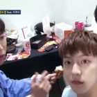"""Watch: BTOB Members Give Hilarious Advice To """"Law Of The Jungle"""" Rookie Minhyuk"""