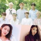 Photographer Rie On Working With BTS For 2019 Season's Greetings + Talks About Red Velvet's Yeri And IU