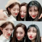 Jung Chaeyeon, Yoo Yeonjung, And Chungha Delight Fans With A Mini I.O.I Reunion