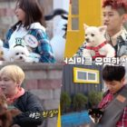 "Bora, Crush, Lee Hong Ki, And Lee Seung Gi Introduce Their Dogs On ""Master In The House"""