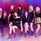 TWICE Asks Fans To Wait For Mina's Return