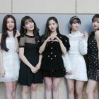 Oh My Girl's Agency Confirms Plans For Spring Comeback