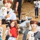 "Idols And Their Dogs Team Up In Photos From MBC's ""Idol Star Athletics Championship"" Spin-Off Dog Competition"