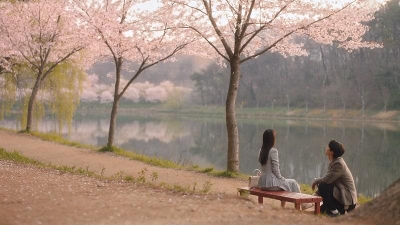Cuplikan kisah cinta antara Hwang Hee Tae dan Kim Myung Hee dalam drama Korea Youth of May.