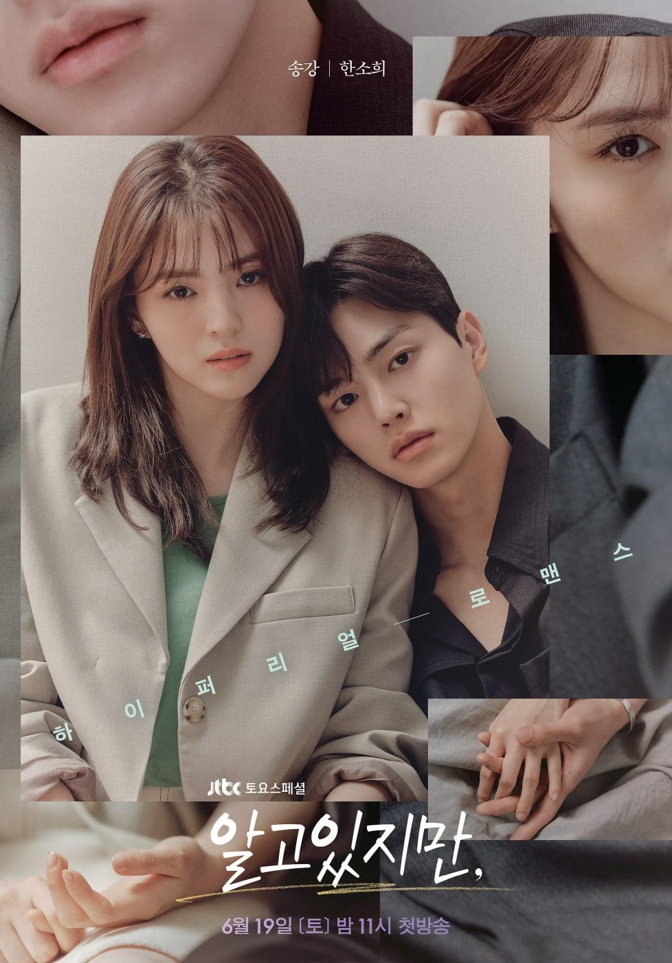 Download Drama Korea Nevertheless Subtitle Indonesia