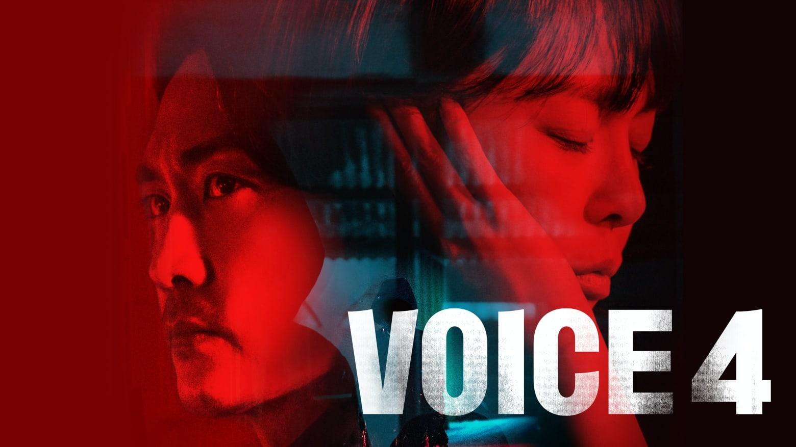 Voice 41