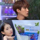 Kwanghee Shares What It Was Like Working As A Music Show MC Alongside IU