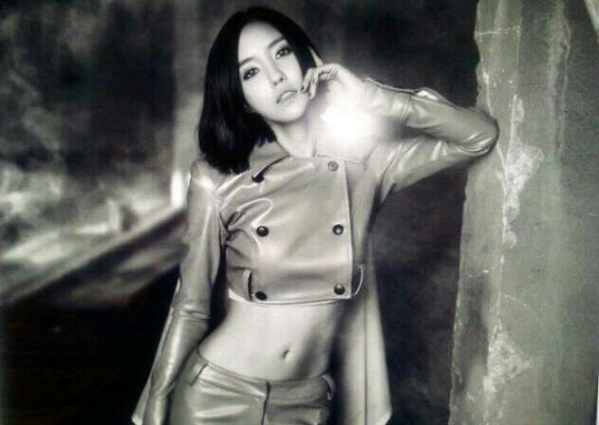 T-ara Hyomin Shows Off Flawless Abs