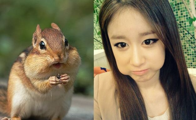 Random Musings: Celebrity Doppelgangers, Lee Hyori Never Gets Off Easy And T-ara's Angel In Disguise?