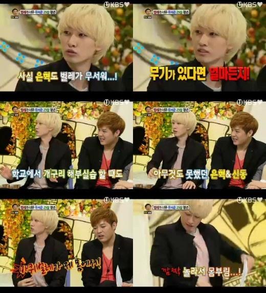 Who is the Bug Catcher in Super Junior's Dorm?