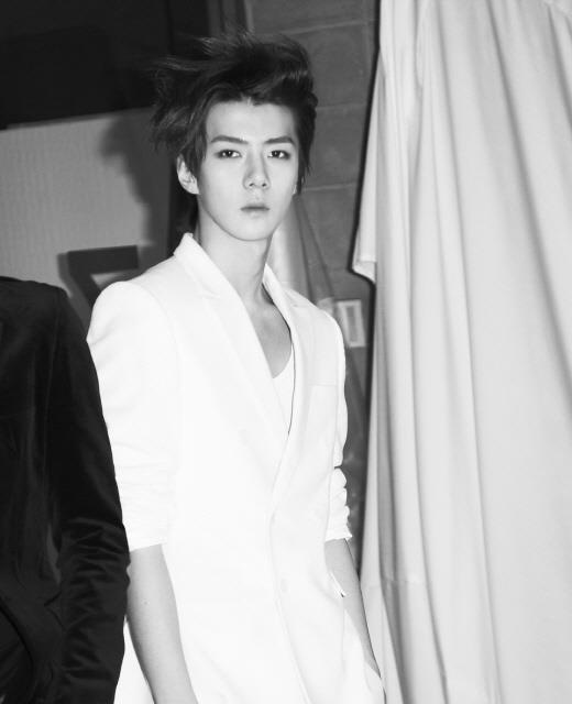 EXO Releases a New Teaser Introducing Se Hun