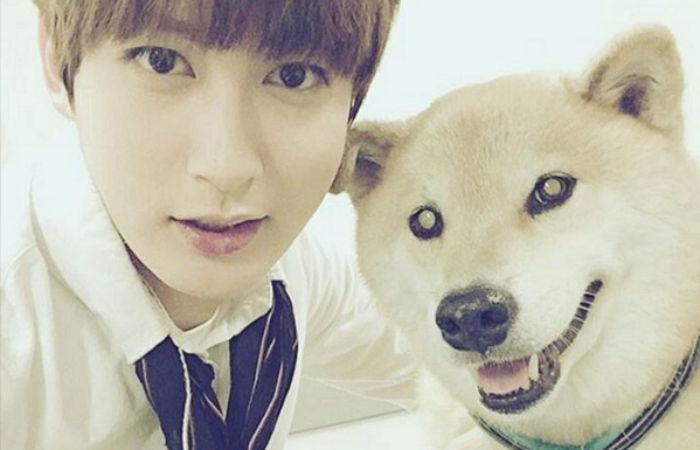 Se revela que Jaehyo de Block B es voluntario en un refugio para perros abandonados