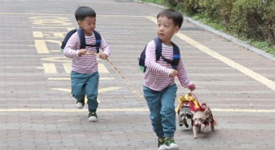 """Seo Eon y Seo Jun tienen una cita super linda con mapaches en """"The Return Of Superman"""""""