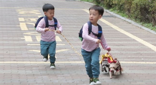 "Seo Eon y Seo Jun tienen una cita super linda con mapaches en ""The Return Of Superman"""