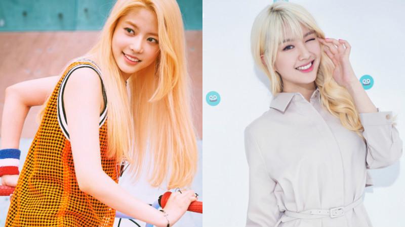 Ex-integrantes de myB se unirán al nuevo grupo femenino de Maroo Entertainment