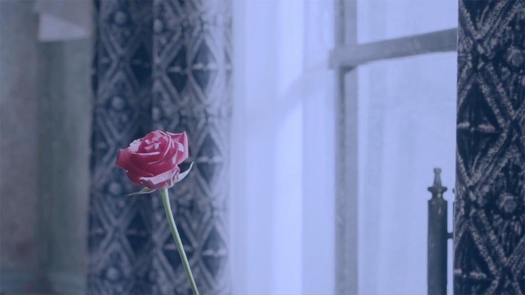 bap-rose-mv-teaser