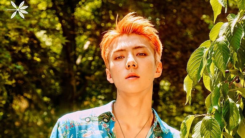Sehun de EXO es elegido como el primer modelo de portada de la revista SuperELLE
