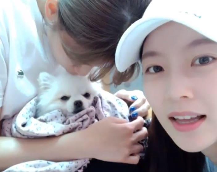 Jeongyeon de TWICE y Gong Seung Yeon comparten una actualización de la condición de su perro