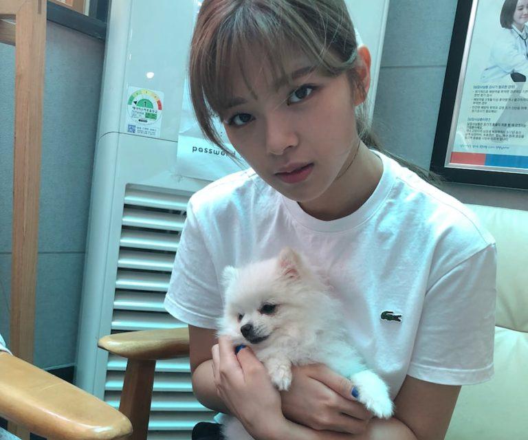 Jeongyeon de TWICE comparte buenas noticias sobre la enfermedad de su perro