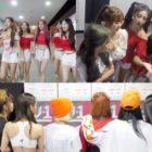 WJSN, Lovelyz y (G)I-DLE muestran interés por el próximo programa de supervivencia para grupo femenino vocalista
