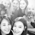 Girls' Generation comparte fotos de una reunión sorpresa