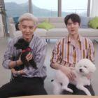 """Los miembros de EXO-SC muestran a sus perros y juegan con animales en """"My Little Television 2"""""""