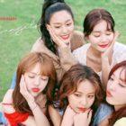 AOA comparte su agradecimiento y amor a los fans en su 7º aniversario de debut