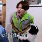 Heechul de Super Junior tuvo una reacción divertida ante un desafortunado encuentro con el perro de Cheetah