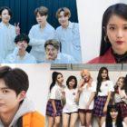 Coreanos son encuestados sobre sus artistas favoritos, actores y más